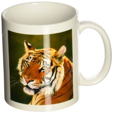 3dRose California, Bengal tiger at Wildlife Waystation - US05 BJA0221 - Jaynes Gallery, Ceramic Mug, 11-ounce
