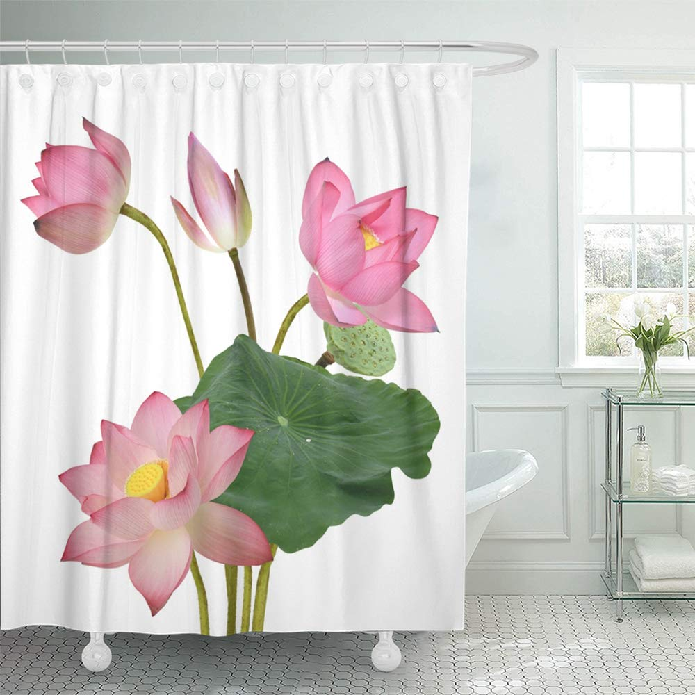 Pknmt Green Aquatic Beautiful Pink Lotus Flower Bouquet White
