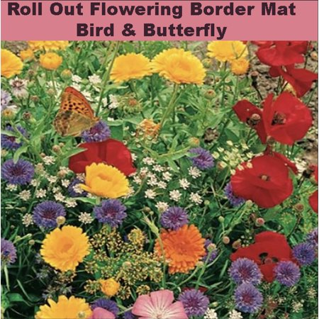 Roll And Grow Flowering Border Mat Bird Amp Butterfly 8