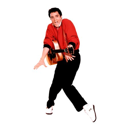 Advanced Graphics 376 Elvis Presley-Red Jacket- 70