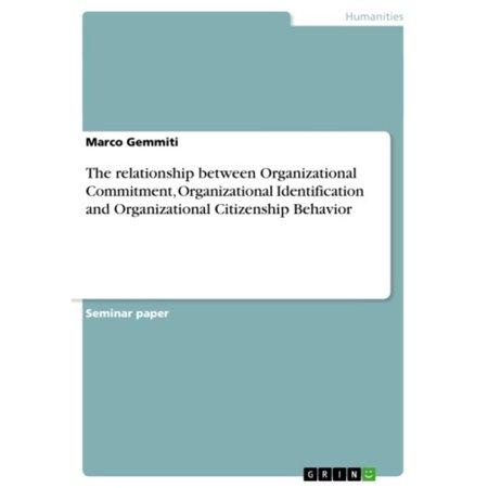 The relationship between Organizational Commitment, Organizational Identification and Organizational Citizenship Behavior - (Relationship Between Organizational Behavior And Organizational Development)