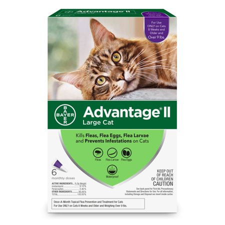Amerock Advantage - Advantage II Flea Treatment for Large Cats, 6 Monthly Treatments