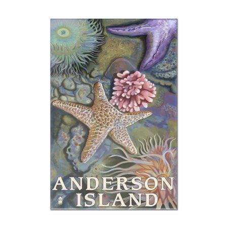 Anderson Island, WA Tidepools - Lantern Press Poster (8x12 Acrylic Wall Art Gallery Quality)