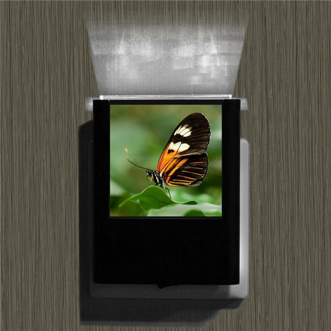 Uniqia UNLC0136 Night Light - Butterfly 6 Color