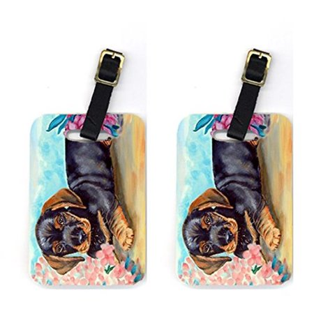 Carolines Treasures 7501BT Pair of 2 Dachshund Luggage Tags - image 1 de 1