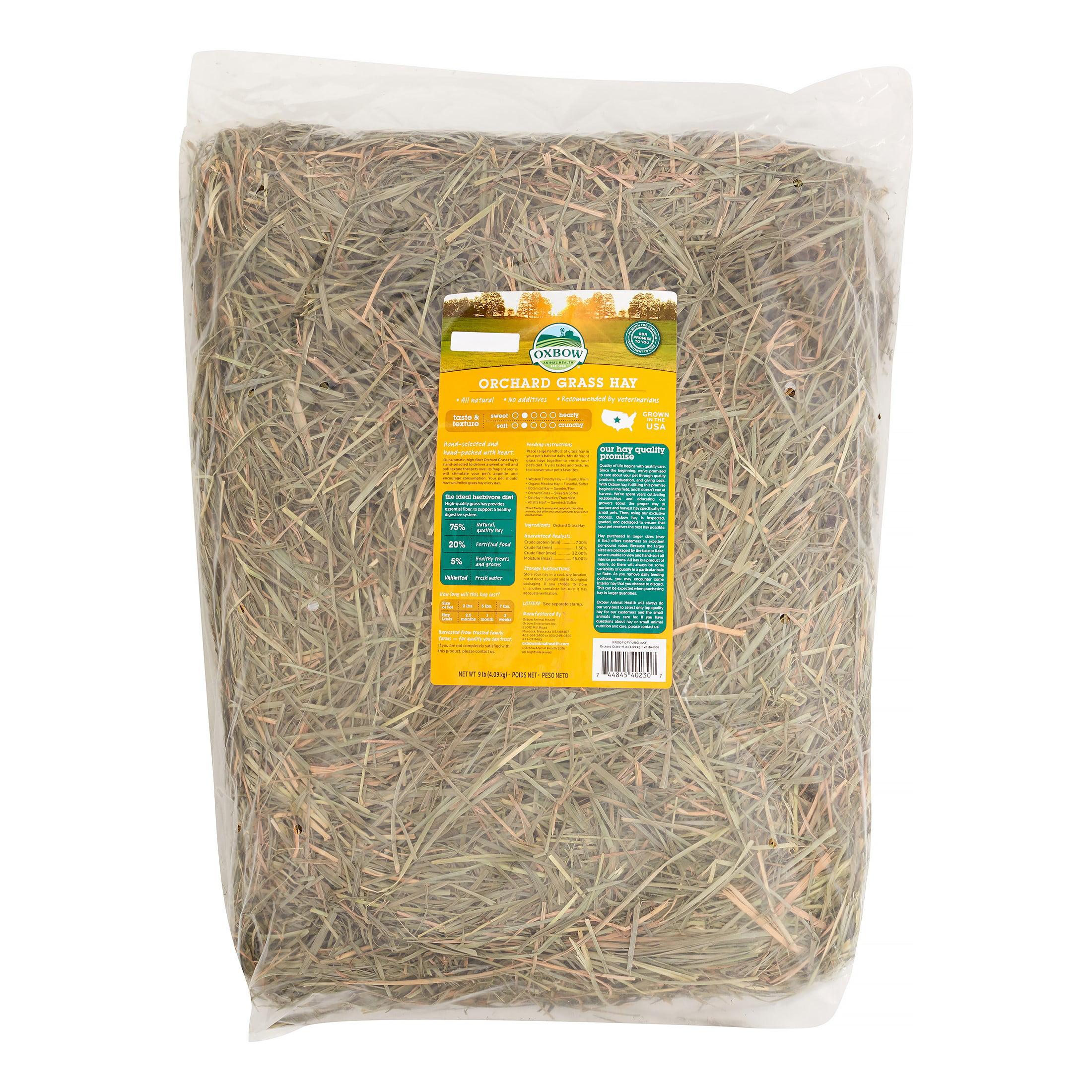 Oxbow Orchard Grass Hay Small Animal Food, 9 Lb
