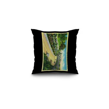 Buena Vista Drive, Entering Riverside (16x16 Spun Polyester Pillow, Black Border) ()