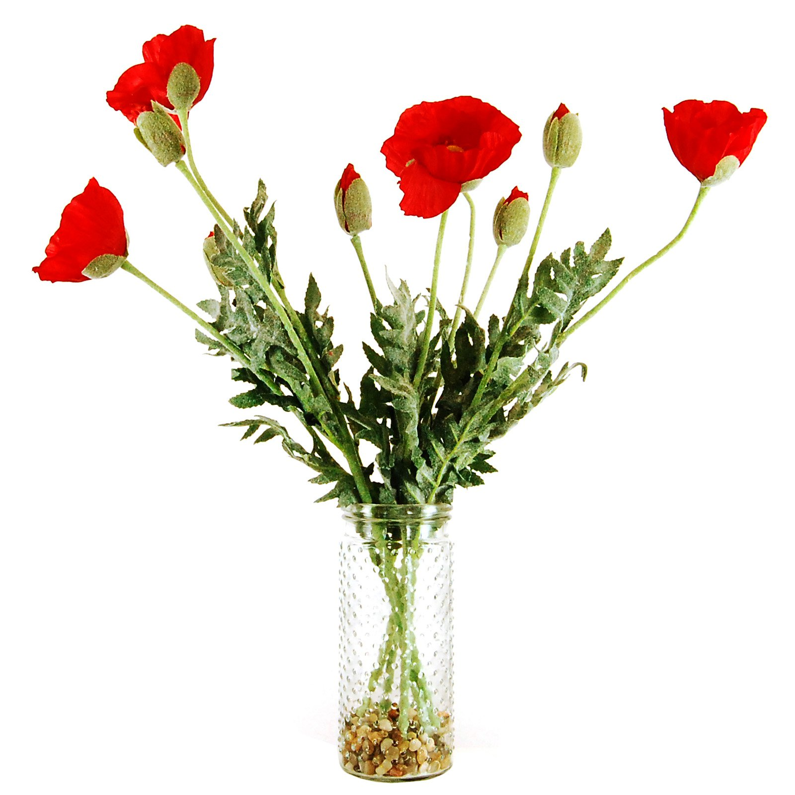 LCG Florals Poppies Silk Flowers with Hobnail Glass Jar