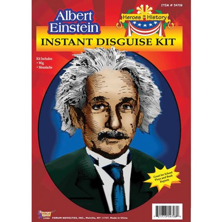 Heroes in History Einstein Adult Halloween Accessory - History Halloween
