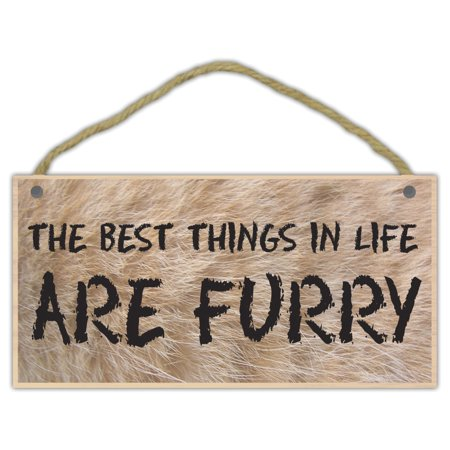 Wooden Decorative Pet Sign: The Best Things In Life Are Furry | Dogs,
