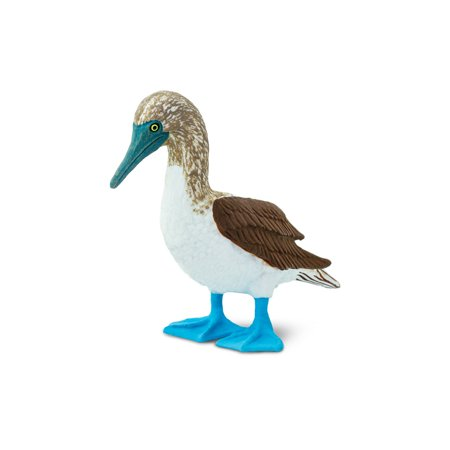 Wings of the World Birds Blue Footed Booby Safari Ltd Animal Toy