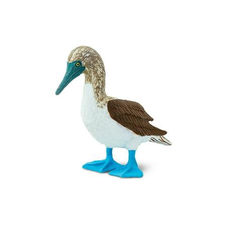 Wings of the World Birds Blue Footed Booby Safari Ltd Animal Toy Figure - Blue Safari