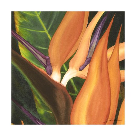 Bird Of Paradise Flower Meaning (Bird of Paradise Tile I Print Wall Art By Jason Higby )