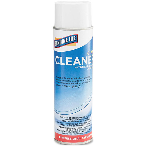 Genuine Joe Glass Cleaner, 19 oz