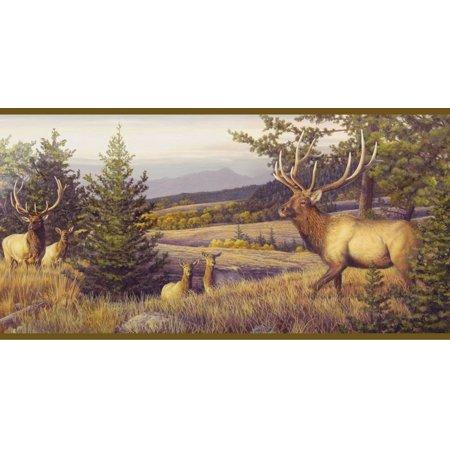 878461 Elk Mountain Wallpaper Border