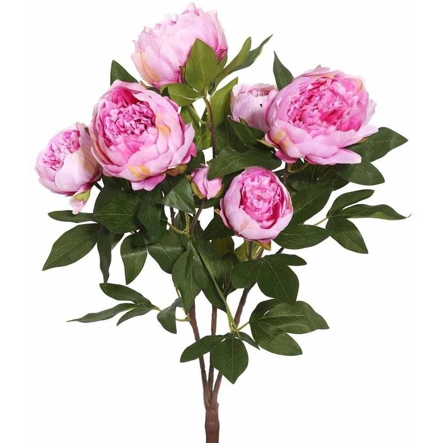"""Vickerman 23"""" Artificial Cerise Peony Bush Featuring 6 Blossoms and 3 Buds"""