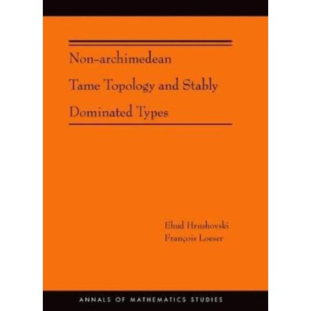 Non-Archimedean Tame Topology and Stably Dominated Types
