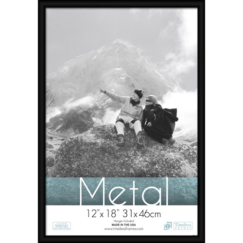 Timeless Frames Metal Picture and Picture Frame, 12x18 by Timeless Frames