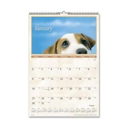 Mead Visual Organizer Large Puppies Monthly Wall Calendar DMW16728