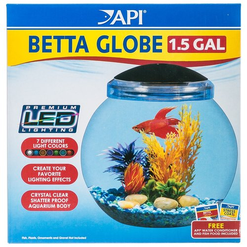 Brown turtle betta bowl for How much are betta fish at walmart