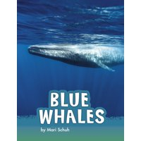 Animals: Blue Whales (Hardcover)