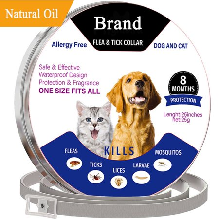 Flea and Tick Control Adjustable Waterproof Collar Protect for Dogs/Cats - Last for 8 Months with Natural Plant Extracts Pet Treatment Prevention Fits All (Dog Flea And Tick Control)