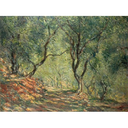 Olive Grove in the Moreno Garden, 1884 Impressionist Green Trees Print Wall Art By Claude
