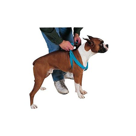 Guardian Gear 2 Step Dog Harness 25 to 40in Blue