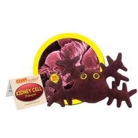 GIANTmicrobes Kidney Cell Plush, 5 to 8 Inches