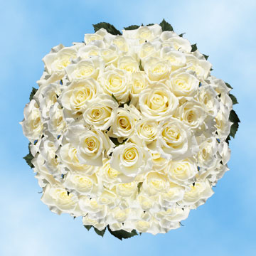 GlobalRose 200 White Roses Mother's Day Flower Specials