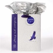 Christian Art Gifts 367739 Gift Bag - Eagle & Be Strong And Courageous With Tag & Tissue - Medium