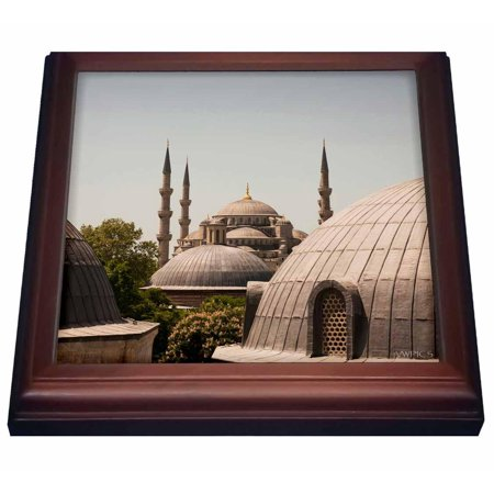(3dRose Sultanahmet Mosque, also known as the Blue Mosque and Sultan Ahmed Mosque, Istanbul, Turkey, Trivet with Ceramic Tile, 8 by 8-inch)