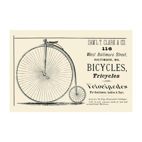 Bicycles, Tricycles, And Velocipedes Print (Unframed Paper Poster Giclee 20x29)