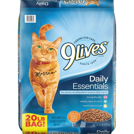 9Lives Daily Essentials Dry Cat Food, 20-Pound (Best Food To Feed Your Cat)