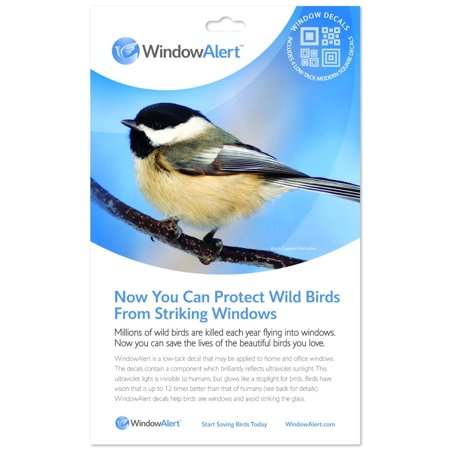 Window Alert Bird - Window Alert 4 Modern Square Decals Protect Wild Birds
