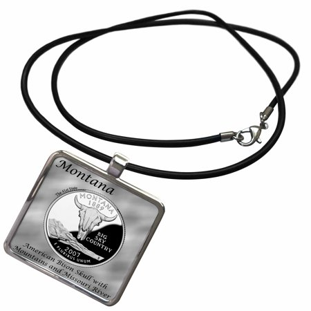 3dRose State Quarter Montana - Necklace with Pendant (ncl_120155_1)
