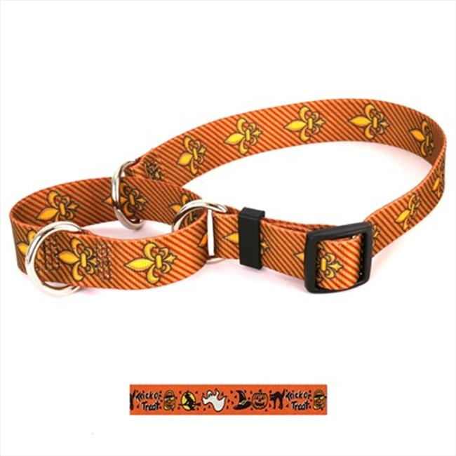 Yellow Dog Design M-TT102M Trick or Treat Martingale Collar - Medium