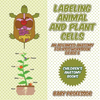 Labeling Animal and Plant Cells - An Advanced Anatomy for Kids Workbook Grade 6 Children's Anatomy