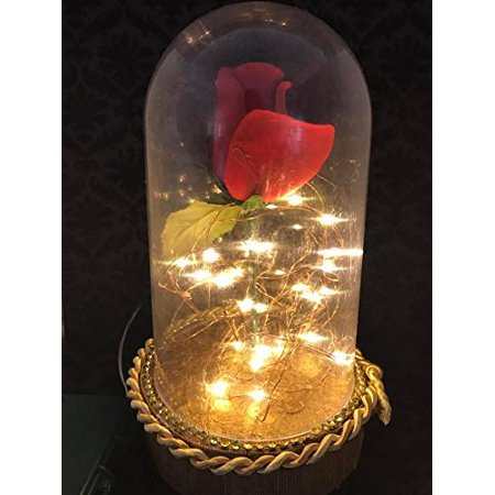 Beauty and The Beast Belle Birthday Rose Dome with Lights Cake Topper Gift Centerpiece