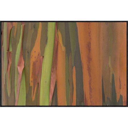 East Urban Home Gum Tree Bark Detail Framed Photographic Print On Canvas