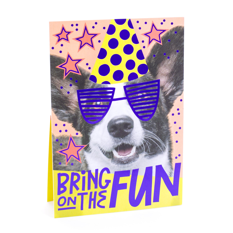 Hallmark Dog Birthday Greeting Card