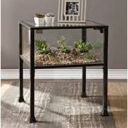 Southern Enterprises Terrarium Glass Display End Table in Black