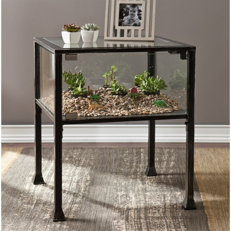 Delicieux Southern Enterprises Terrarium Glass Display End Table In Black