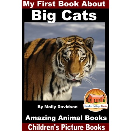 My First Book About Big Cats: Amazing Animal Books - Children