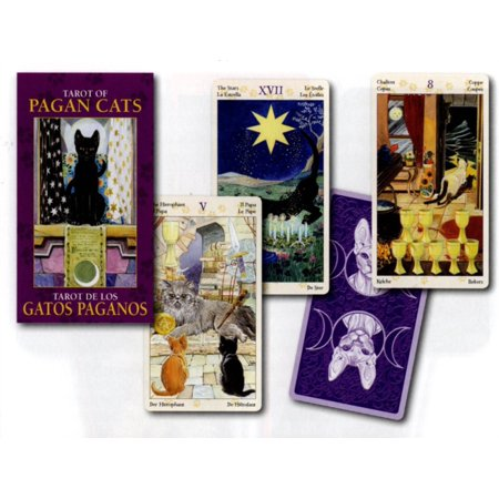 Tarot Of Pagan Cats Mini Tarot  78 Full Colour Cards   Instructions 44X80mm  Hardcover