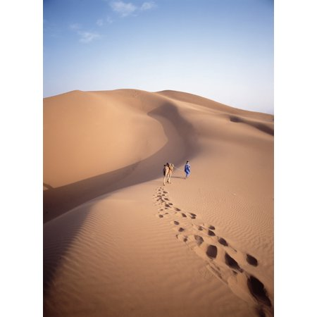 Blue Man Historically A Tribe Of Sahara Traders Leading Camel Through The Dunes At Dawn - Blue Ocean Traders