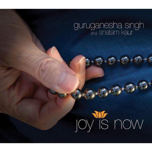 Joy Is Now (Dig)