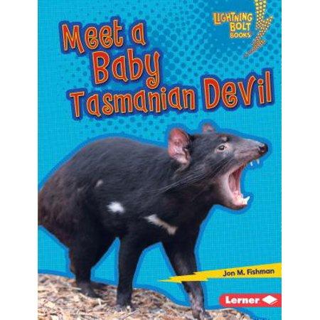 Meet a Baby Tasmanian Devil](Devil Babies)