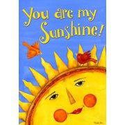 """You Are My Sunshine Summer Garden Flag Birds Decorative Yard Banner 12"""" x 18"""""""