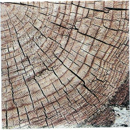 Cut Timber Beverage Napkins (16 pack) (Cut Napkin)